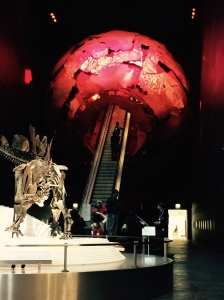 The entrance at the Museum of Natural History.