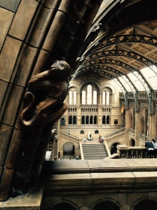 Overlooking Hintze Hall, in the Museum of Natural History, London