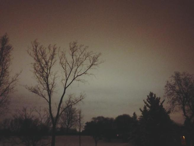 """Our winter sky at night, a sight to behold."" -photo by Christian Daoust"